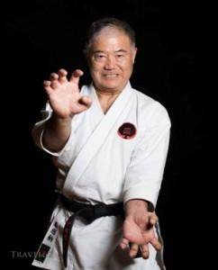 karate-yorum-3