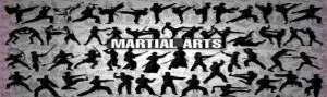 karate-yorum-6