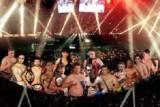 kickboxing_champion_yeni