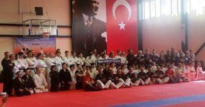 Wjjf Seminer Istanbul