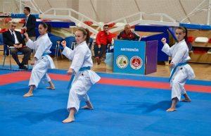 Külüpler Karate 2