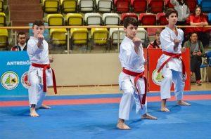 Külüpler Karate 3