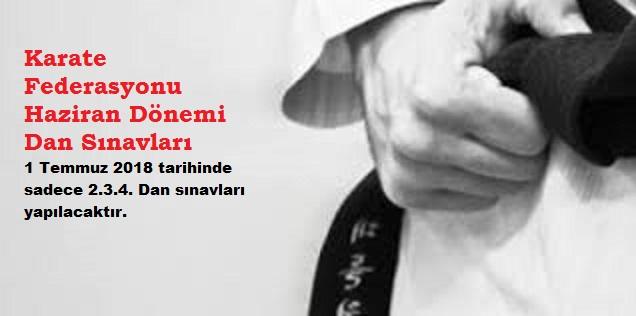 Karate Dan Sinavi