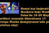Wushu Palas Olay