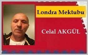 Celal Akgul