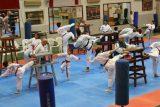 Taekwondo Kktc