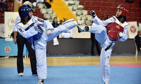 Taekwondo Kulupler