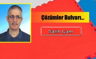 türk karatesi