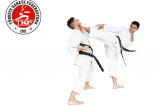 Karate Antrenör