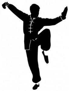 Kung Fu Wushu Shaolin