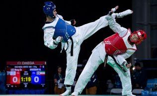 Taekwondo Kusaklar Seviyeler