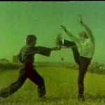 Cüneyt Arkın'ın Film Sahneleri ve Dövüş Teknikeri!