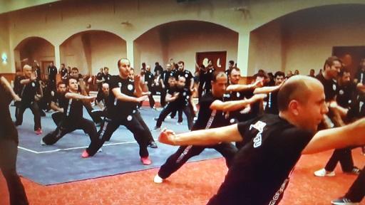 Wushu Kung Fu Antrenörlük ve Hakemlik Vize Semineri