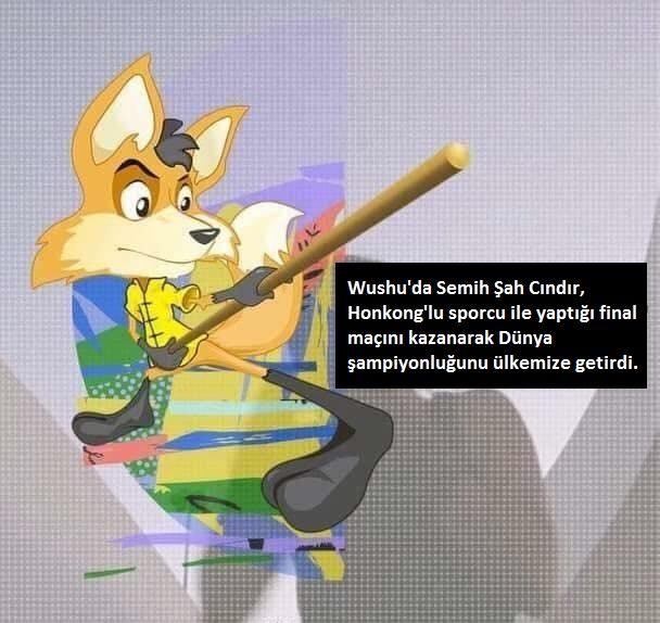 Semih Şah Cındır, Wushu Dünya Sanda Şampiyonu Oldu