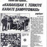 Karate Fedarasyonunun Tabanındaki Gerçek