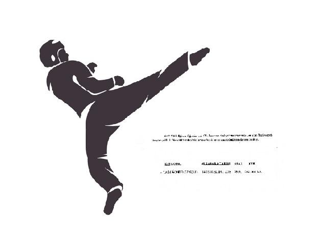 Taekwondoda 'Faaliyetler Üst Üst ve Çakışıyor' İddiası!
