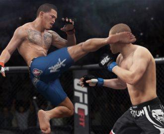 Mixed Martial Arts (MMA)  Amatör ve profesyonel anlamda birçok ülkede MMA en hızlı gelişen spordur.