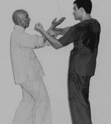 Temel Wing-Chun Kung-fu Terimleri